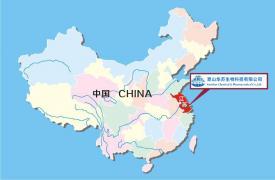 公司在中国的位置